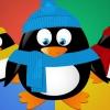Google chuẩn bị tung ra bản cập nhật Real-time Penguin
